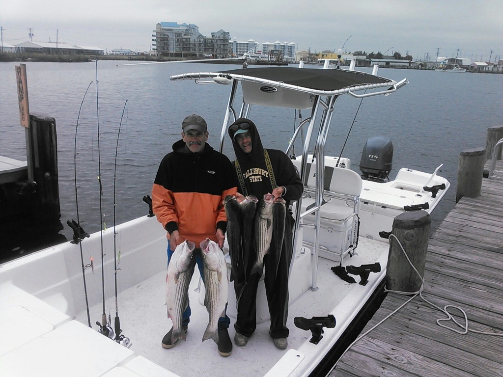 11-15 jump seahawk charter